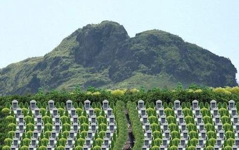 整齐排列的墓地
